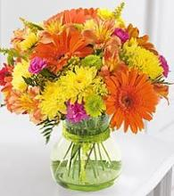Brighten Your Day Gerbera Arrangment