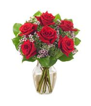 Cupid 1/2 Dozen Red Roses