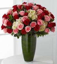 Indulgent Luxury Rose Bouquet - 48 Stems of 24-inch Premium Long